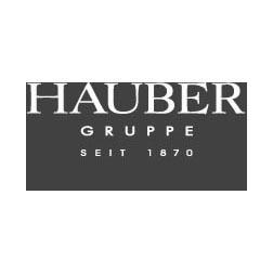 Logo Firma FERD. HAUBER GMBH  in Nürtingen