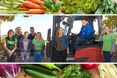 Reichenau Gemüse eG Firma