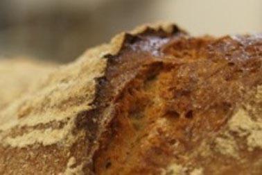Bio Bäckerei Berger Firma
